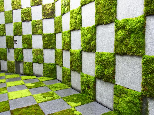 現代の暮らしに融合する新しい苔庭
