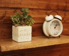 グリーンや雑貨が映える、自然素材を使ったゼロスタイルの家